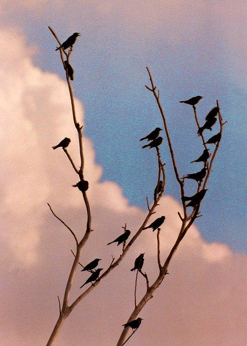Birds Greeting Card featuring the photograph 19 Blackbirds by Steve Karol