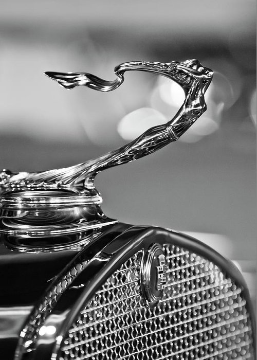 1930 Cadillac Roadster Greeting Card featuring the photograph 1930 Cadillac Roadster Hood Ornament 2 by Jill Reger