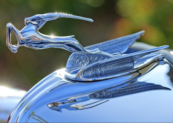 1933 Chrysler Imperial Greeting Card featuring the photograph 1933 Chrysler Imperial Hood Ornament 2 by Jill Reger