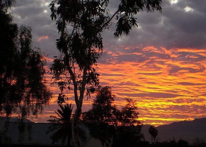 Arizona Greeting Card featuring the photograph Arizona Sunset by Lessandra Grimley
