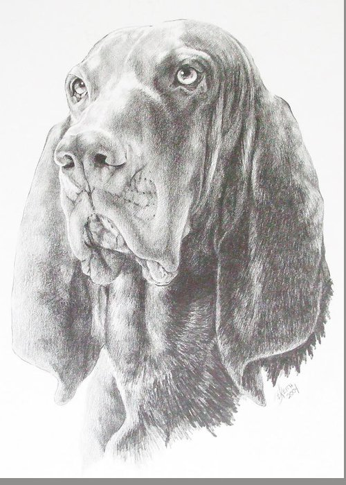 Dog Greeting Card featuring the drawing Black And Tan Coonhound by Barbara Keith