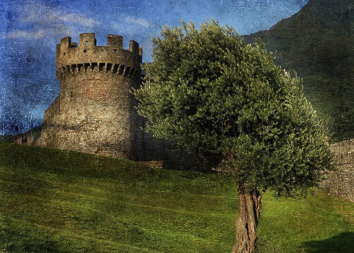 Castle Greeting Card featuring the photograph Castle by Joana Kruse