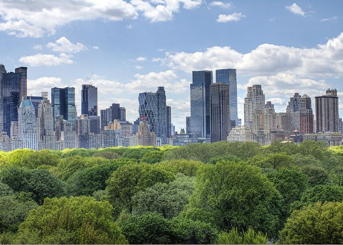 Central Park Greeting Card featuring the photograph Central Park South by Ariane Moshayedi