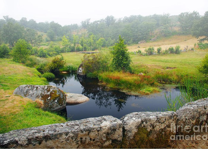 Autumn Greeting Card featuring the photograph Creek by Carlos Caetano