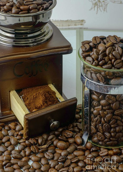 Bean Greeting Card featuring the photograph Daily Grind Coffee Beans by F Helm