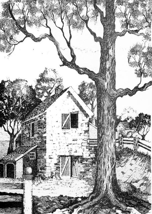 Texas Trees Barn Landscape Ink Giclee Prints Greeting Card featuring the drawing Grandpas Barn by Donn Kay