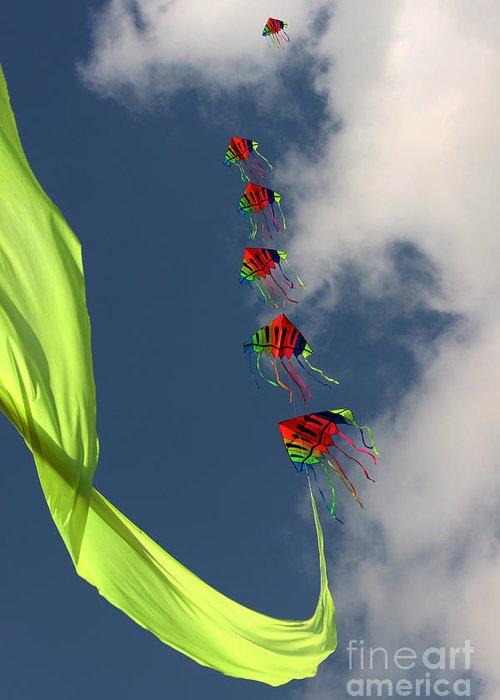 Kite Greeting Card featuring the photograph High Hopes by Angel Ciesniarska