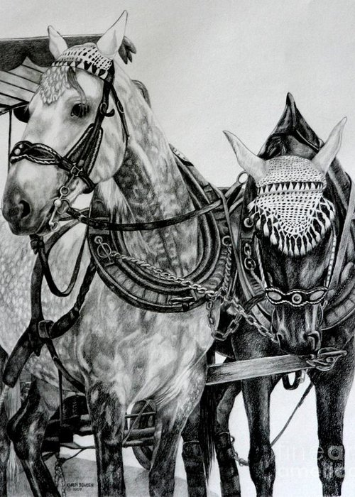Horse Pencil Black White Germany Rothenburg Greeting Card featuring the drawing 2 Horses Of Rothenburg 2000usd by Karen Bowden