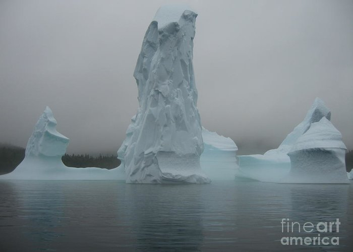 Icebergs Newfoundland Greeting Card featuring the photograph Icebergs by Seon-Jeong Kim