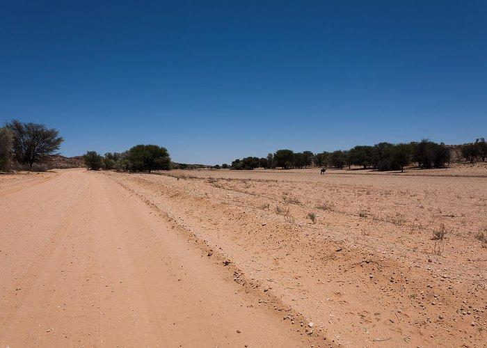 Kalahari Desert Greeting Card featuring the photograph Kgalagadi by Davide Guidolin