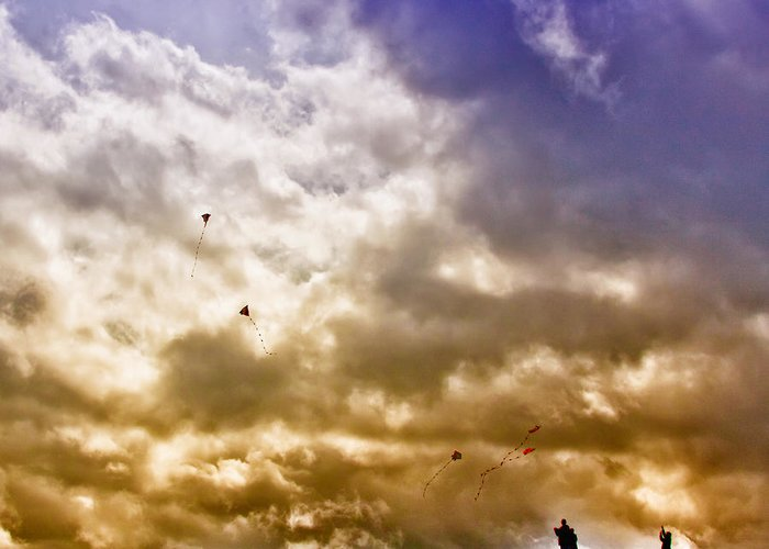 Kites Greeting Card featuring the photograph Kite Flying by David Patterson