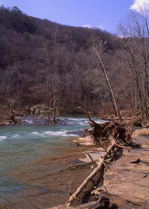 Greeting Card featuring the photograph Long Pool Log Jam by Curtis J Neeley Jr