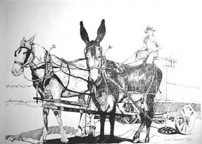 Mules Greeting Card featuring the painting 2 Mules by Terri Kilpatrick