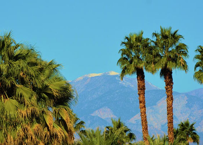 Scenic Greeting Card featuring the photograph Palm Springs Mountains by Richard Jenkins