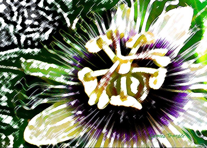 Passion Fruit Flower Greeting Card featuring the digital art Passion Flower by James Temple
