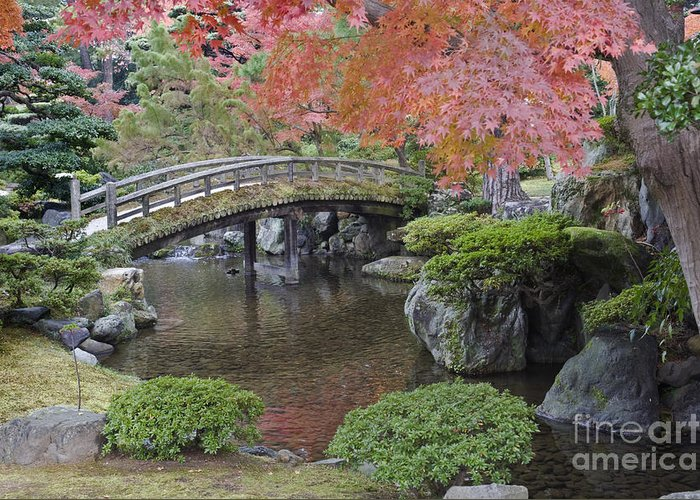 Mood Greeting Card featuring the photograph Sento Imperial Palace Gardens Lake by Rob Tilley