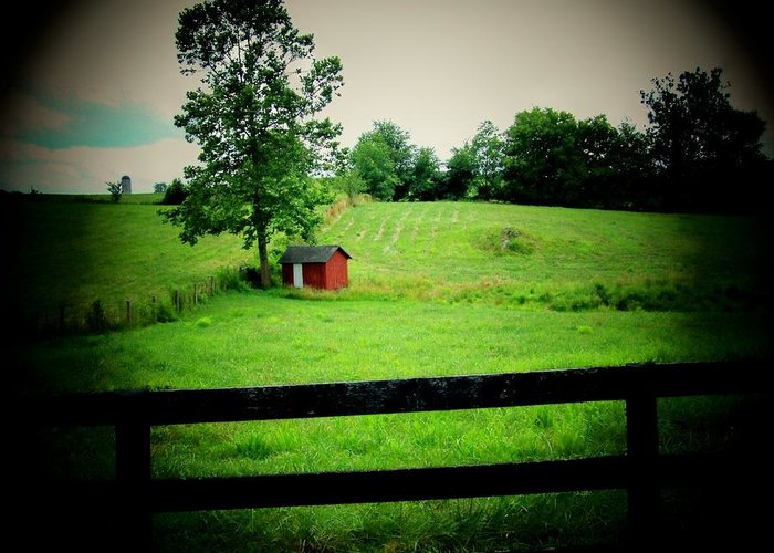 Shed Greeting Card featuring the photograph Shed And Fence by Michael L Kimble