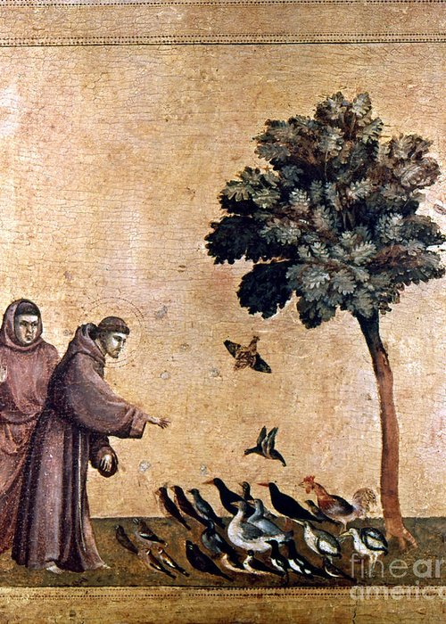 Aod Greeting Card featuring the painting St. Francis Of Assisi by Granger
