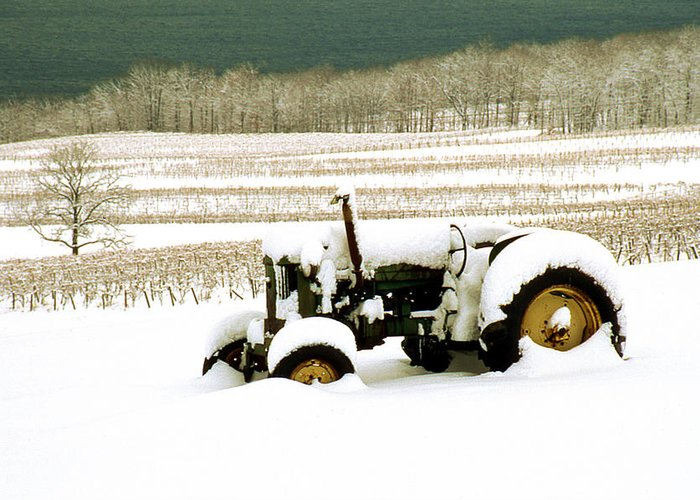 Greeting Card featuring the photograph Tractor In Snowy Vineyard by Roger Soule
