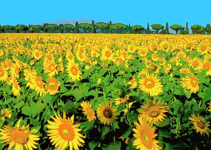 Tuscany Sunflowers Greeting Card featuring the mixed media Tuscany Sunflowers by Dominic Piperata