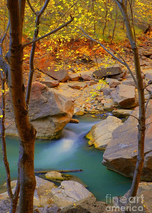 Utah Greeting Card featuring the photograph Virgin River In Autumn by Dennis Hammer