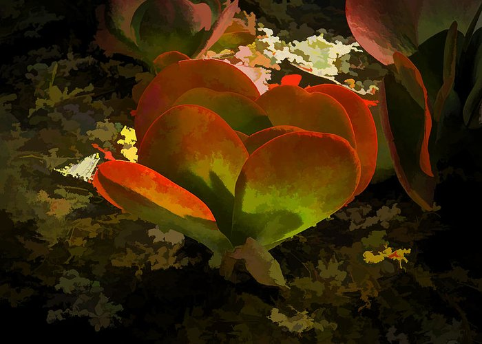 Flower Greeting Card featuring the photograph 225 by Garth Pillsbury