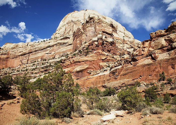 Capitol Reef National Park Greeting Card featuring the photograph Capitol Reef National Park by Mark Smith
