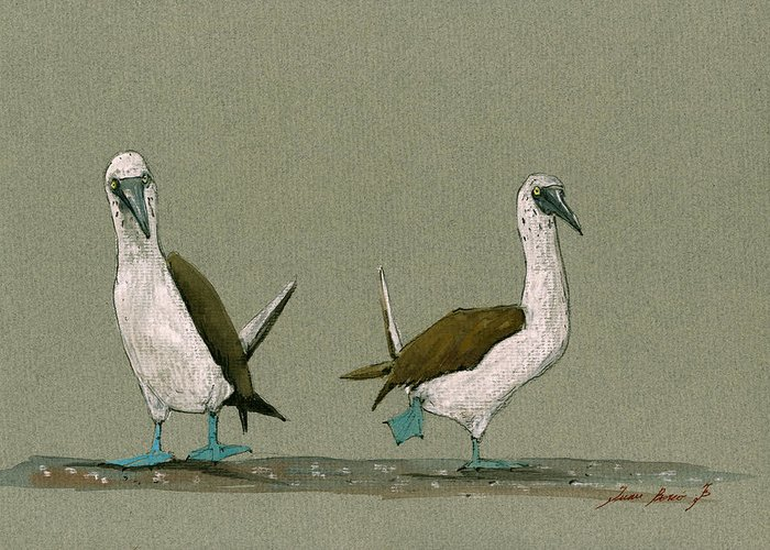 Blue Footed Booby Greeting Cards