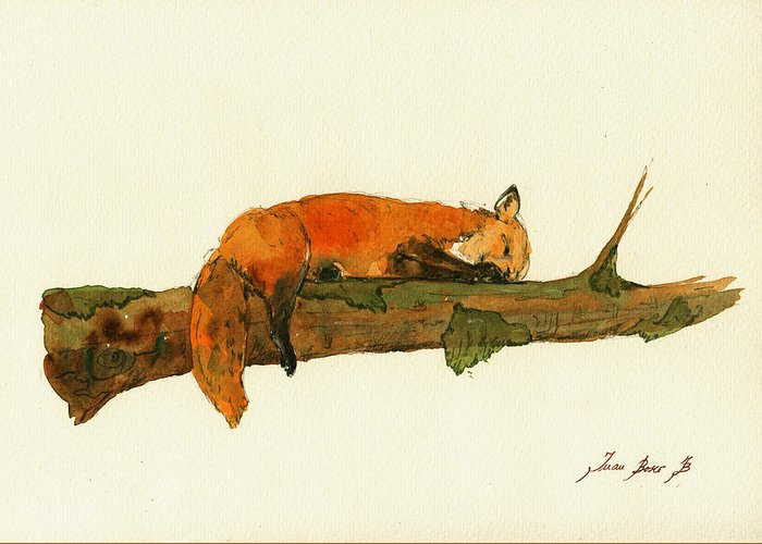 Fox Greeting Card featuring the painting Fox Sleeping Painting by Juan Bosco