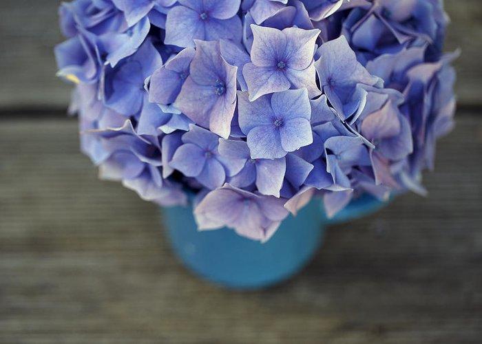 Violet Blue Photographs Greeting Cards