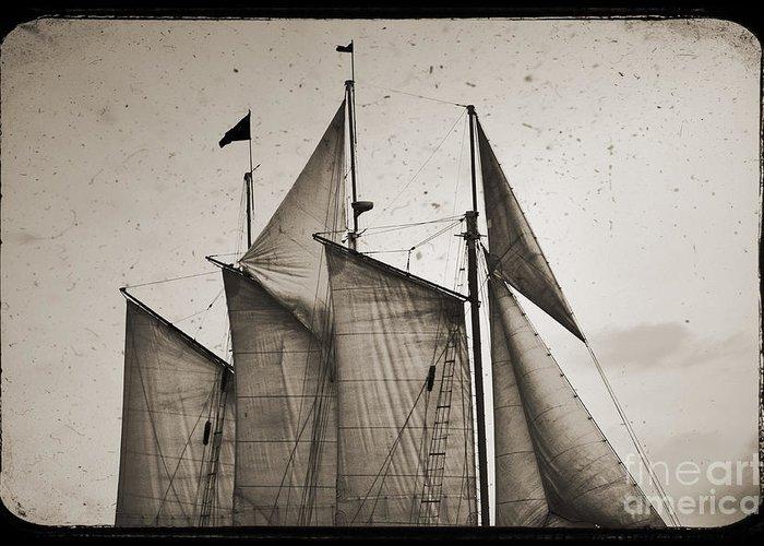 Schooner Pride Greeting Card featuring the photograph Schooner Pride Tall Ship Charleston Sc by Dustin K Ryan