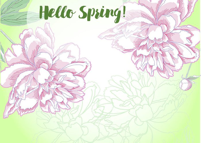 Peony Greeting Card featuring the digital art Spring Background With White And Pink Peony by Natalia Piacheva