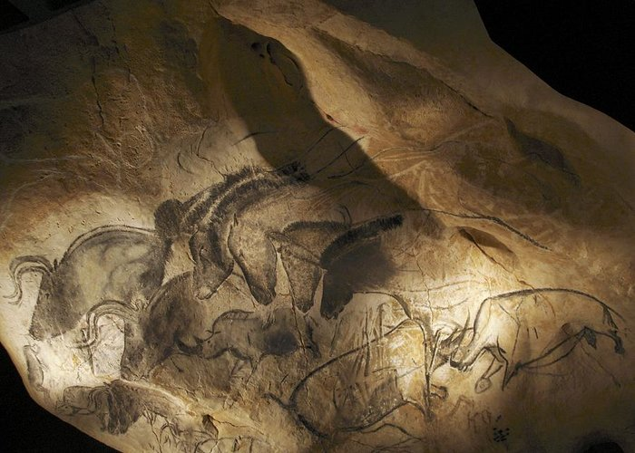 Animal Greeting Card featuring the photograph Stone-age Cave Paintings, Chauvet, France by Javier Truebamsf