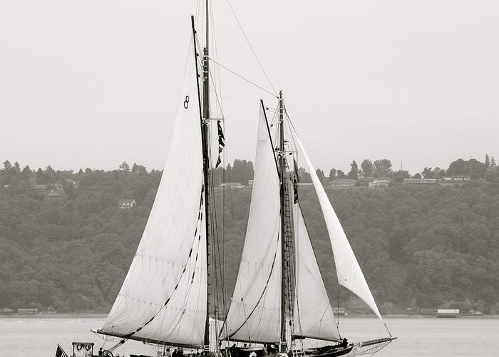 Tall Ships Greeting Card featuring the photograph Zodiac by Sonja Anderson