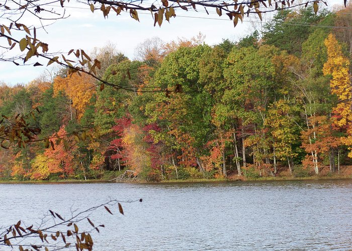 Lake Greeting Card featuring the photograph 3008-fall Waterscape by Martha Abell