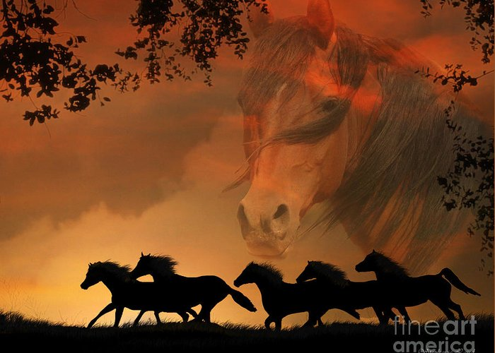 Horse Greeting Card featuring the photograph 4-ever Free by Stephanie Laird