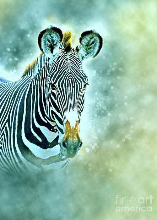 Grevys Zebra Greeting Card featuring the photograph Grevys Zebra, Samburu, Kenya by Humorous Quotes