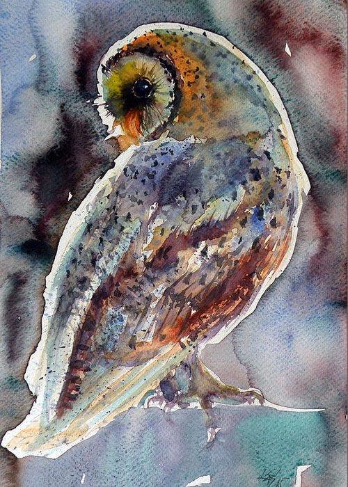 Barn Owl Greeting Cards