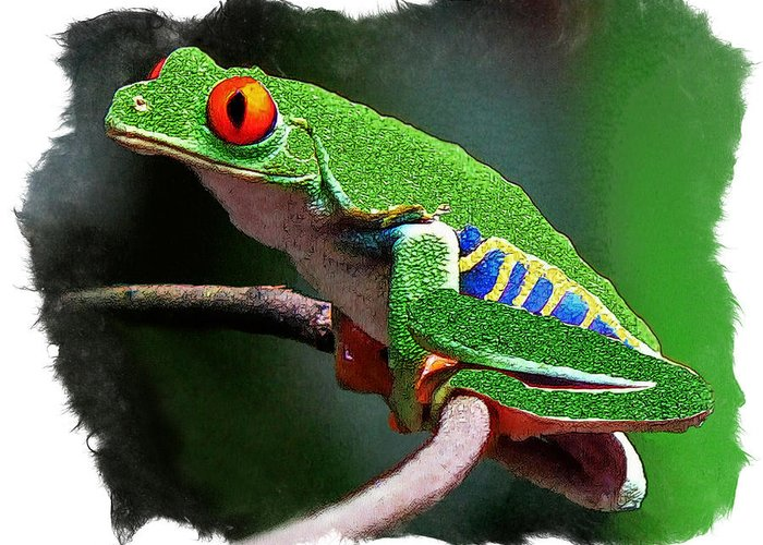 Red-eeyed Leaf Frog Greeting Card featuring the digital art Red-eyed Leaf Frog by Larry Linton