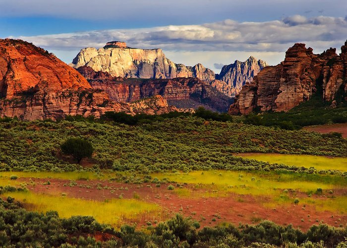 Zion National Park Greeting Card featuring the photograph Zion National Park Utah by Utah Images