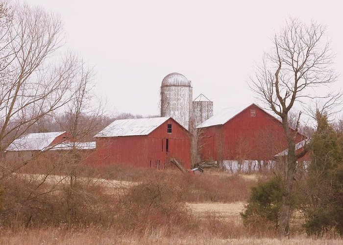 Farms Greeting Card featuring the photograph 519 Farm by Amanda Vouglas
