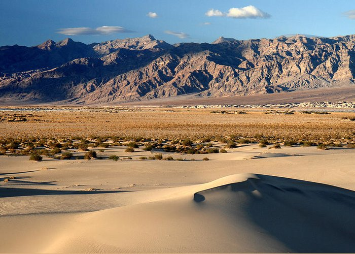 Death Valley Greeting Card featuring the photograph Mesquite Sand Dunes In Death Valley National Park by Pierre Leclerc Photography