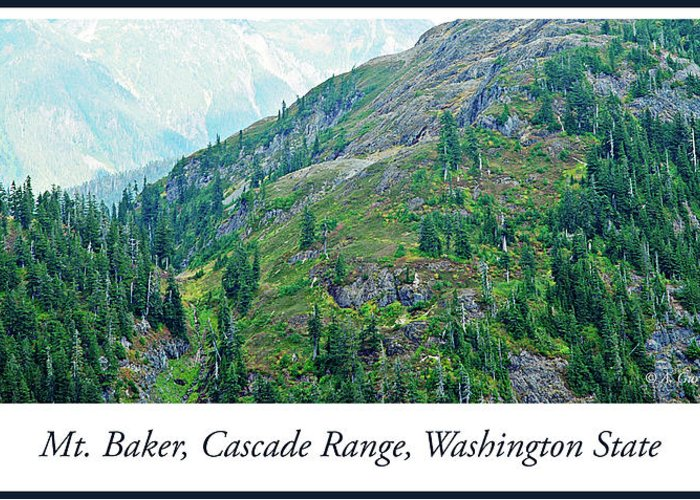 Mount Baker Greeting Card featuring the photograph Mount Baker, Cascade Range, Washington State by A Gurmankin