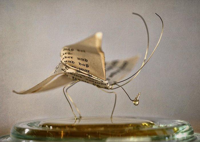 Figurine Greeting Cards