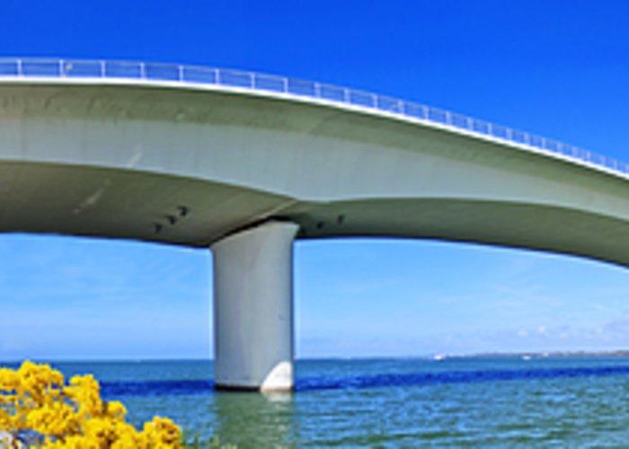 Sarasota Greeting Card featuring the photograph 6x1 Sarasota Skyline With Ringling Causeway Bridge by Rolf Bertram