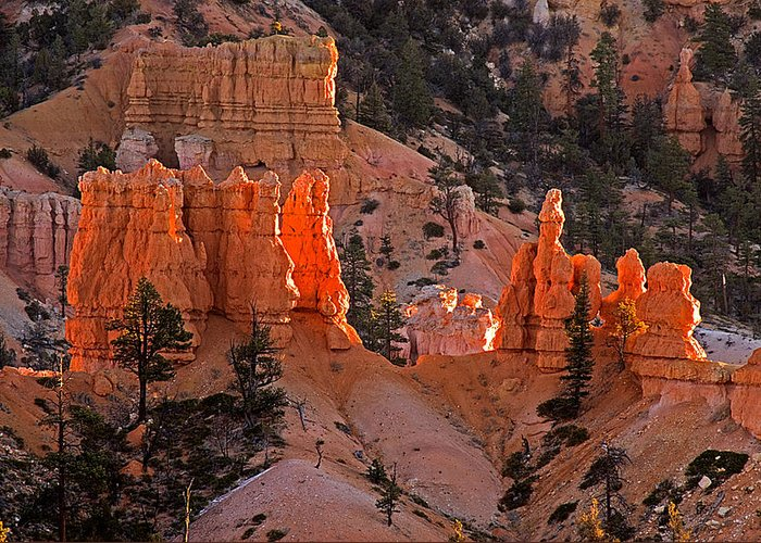 Landscape Greeting Card featuring the photograph Bryce Canyon N.p. by Larry Gohl