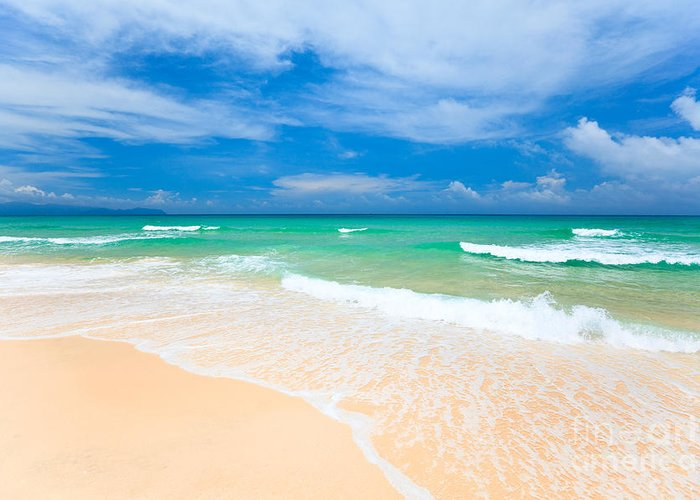 Background Greeting Card featuring the photograph Sandy Beach by MotHaiBaPhoto Prints