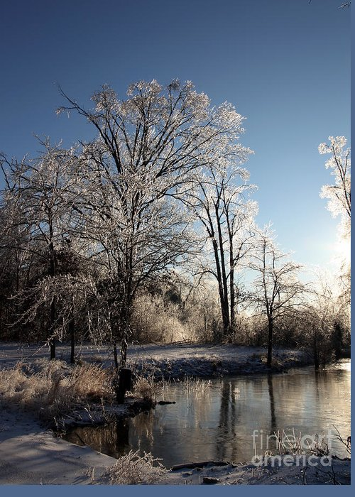 Trees Greeting Card featuring the photograph Trees In Ice Series by Amanda Barcon