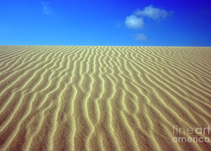 Sand Greeting Card featuring the photograph Desert by MotHaiBaPhoto Prints