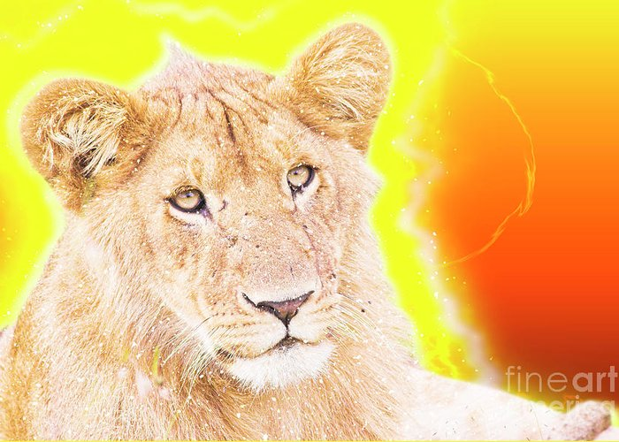 Lion Greeting Card featuring the photograph lioness Masai Mara, Kenya by Humorous Quotes